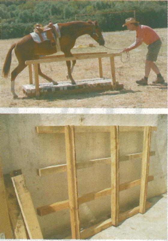 Puente de madera para caballos