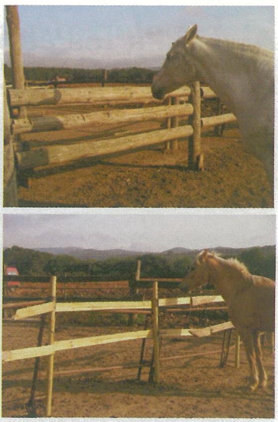 Construir un cercado para caballos