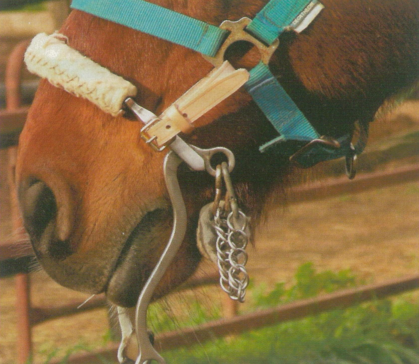 Convertir cabezada de cuadra en hackamore la colaga for Cabezadas para caballos