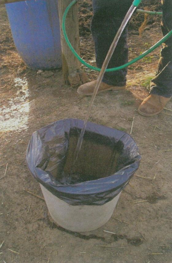 agua para caballos