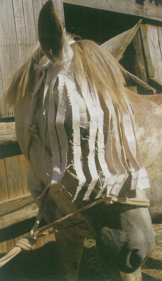 Mosquero de emergencia para caballos