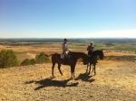 paseos a caballo valladolid