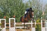 prados caballos valladolid